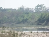 Royal Bardia Nationalpark